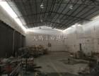 独立星棚结构厂房500方,厂房光线好实用