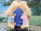 毛绒流氓狗 大头狗 可爱抱枕靠垫超大公仔50厘米65厘米85厘米1.4