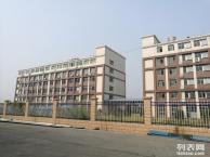 宁乡金洲新区有2栋框架结构厂房出租