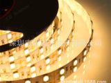 工厂批发 led灯带 5050贴片软灯带 120珠 LED软灯条