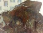 西藏昌都市类乌齐藏瓷红玉石