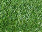 草坪地毯 人造草坪地毯厂家直销 常州人造草坪地毯