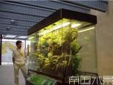 长沙鱼缸定做 鱼缸清洗翻缸 植物造景就找 南国水景