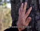武汉高清影视广告片制作
