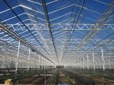 潍坊温室大棚专业建设 温室蔬菜大棚