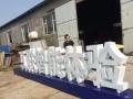 大型广告招牌 LED发光字、水晶字 亮化工程