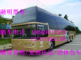 (汽车票)滁州汽车卧铺客车高速直达 13701455158长