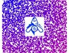 微信平台小程序开发天猫飞猪制作运营推广