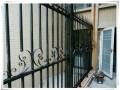 锌钢围墙护栏,阳台栏杆,楼梯扶手生产厂家秋季倾情回馈厂家直销