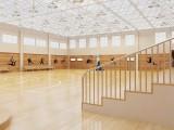 枫桦木柞木运动地板篮球场实木地板健身房体育专业防滑运动木地板