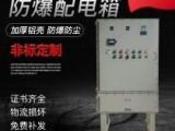 防爆电箱照明动力箱变频调速仪表箱软启动PLC控制