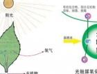 室内环境检测与治理 专业治理甲醛苯等有害气体