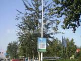 加工订制太阳能路灯LED路灯庭院灯