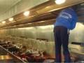 拱墅区公司打扫卫生,擦玻璃