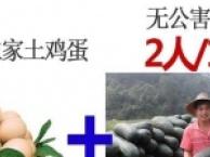 惠州1日游、游高榜山+广东杭州西湖之称:惠州西湖