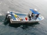 供应灵山兄弟W30型9米钓鱼艇海上钓鱼艇工作艇
