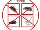 上海灭鼠灭蟑螂公司