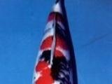 滨州红白,大正,昭和,白写锦鲤低价销售