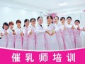 广东专业催乳师培训机构 理论+实操 拿证 优秀学员留公司