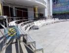 惠州出租学士服 大合影台阶站架出租 大合影拍摄.