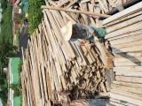 新模板木方 旧模板旧木方 长跳板 旧圆木