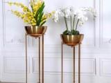 金筑达钛金砂面不锈钢花盆