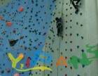 金山成人攀岩墙娱乐设备厂家室内室外攀登架工厂直销