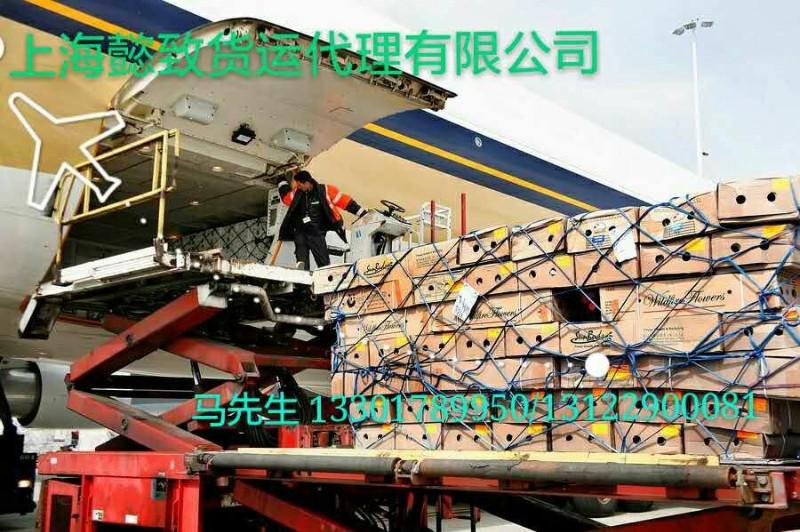 上海SPF级实验鼠空运宠物空运公司