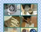 专业清洗各种品牌饮水机
