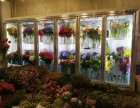 佛山市雅绅宝多门鲜花柜鲜花冷藏保湿展示柜同城免费送货