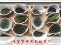 零基础学茶艺,自学茶艺,香道体验,茶艺茶道培训