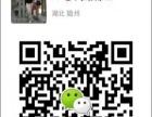 Miss Chen 网站建设 网络推广 平台发布