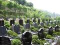 专业〈陵园公墓〉中介平台