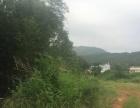 村大道旁旱地 土地 300平米 ,