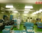 日本劳务鱼片加工