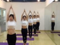 苏州成人舞蹈培训肚皮舞瑜伽中国舞爵士民族舞