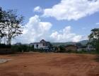 出售勐海曼尾村路边土地低价出售