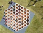 蜂巢迷宫出租出售蜂窝迷宫租赁迷宫全套设备设计安装制