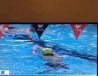 游泳培训教学。。