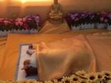 杭州殯儀寵物 處理寵物遺體店