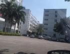 长安沙头一楼的带地坪漆500平米厂房招租