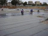 天津红桥区专业楼顶铺油毡 工程防水 防水补漏