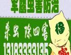 平顶山-舞钢-汝州-各县区灭蟑螂-灭老鼠-白蚁防治公司