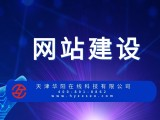 天津网站建设推广营销公司 华阳科技
