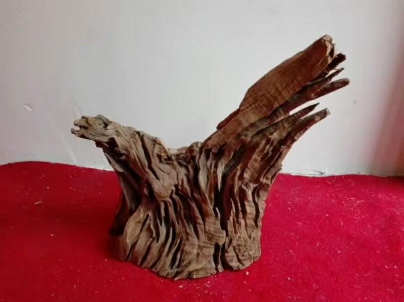 原产地造景沉木造景沉木造景沉木批发