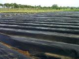 潍坊优良的地膜-黑地膜价格