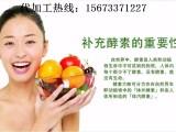 果蔬酵素代加工