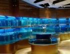 广州滘口定做饭店海鲜鱼池/荔湾区坑口海鲜大排档鱼池制冷安装
