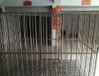 大型犬笼闲置出售