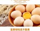 木几正宗有机草鸡蛋新鲜放养农场散养土鸡蛋30枚